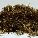mulch_hidrosiembra_wood_peat