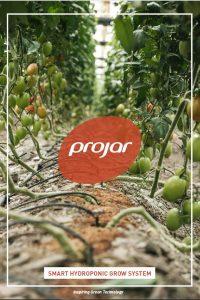 Smart Hydroponic Grow System