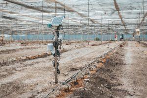 sistema mejorante de suelos projar
