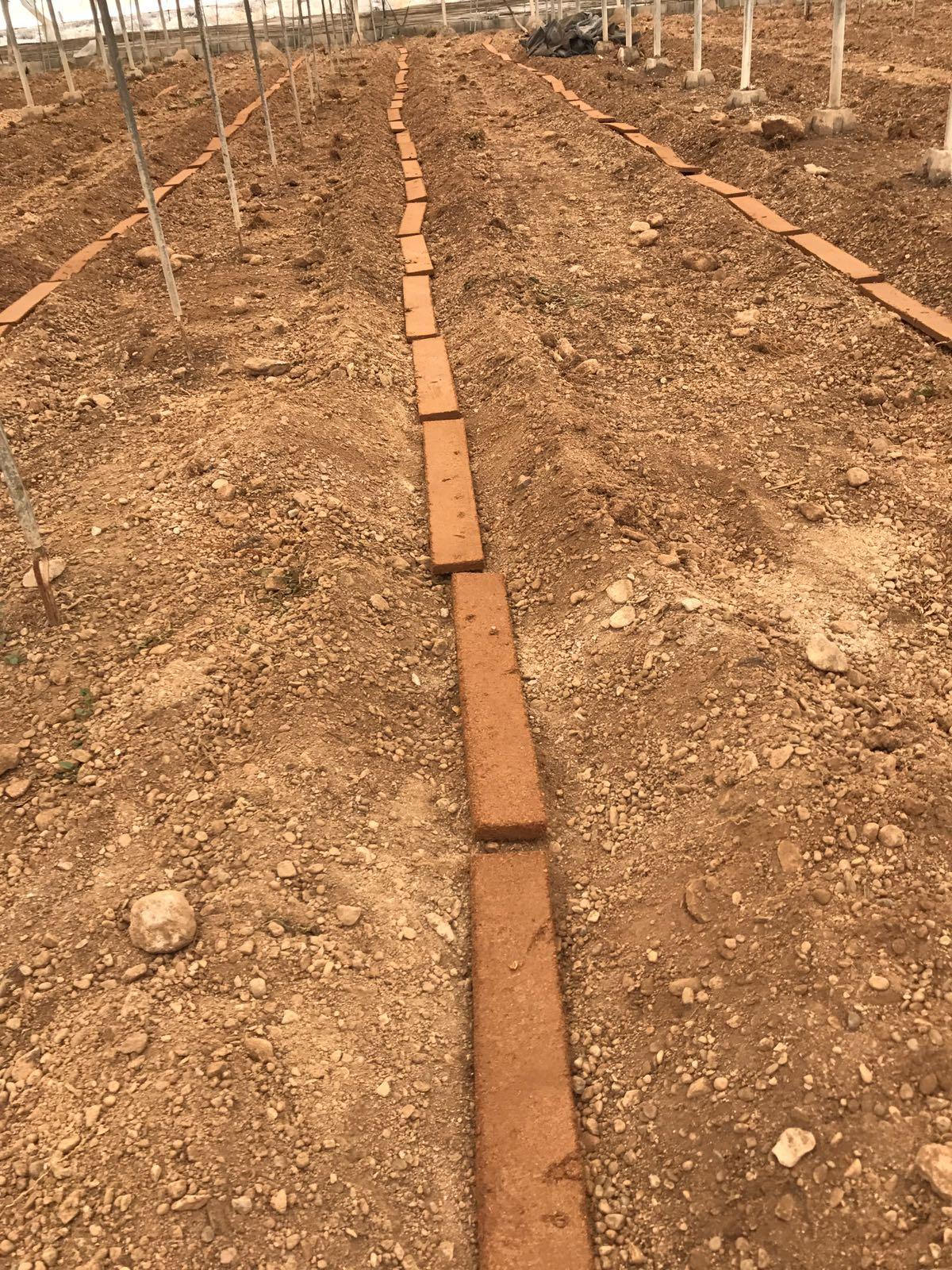 sistema mejorante de suelos