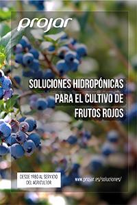 FOLLETO DE SOLUCIONES HIDROPÓNICAS PARA BERRIES