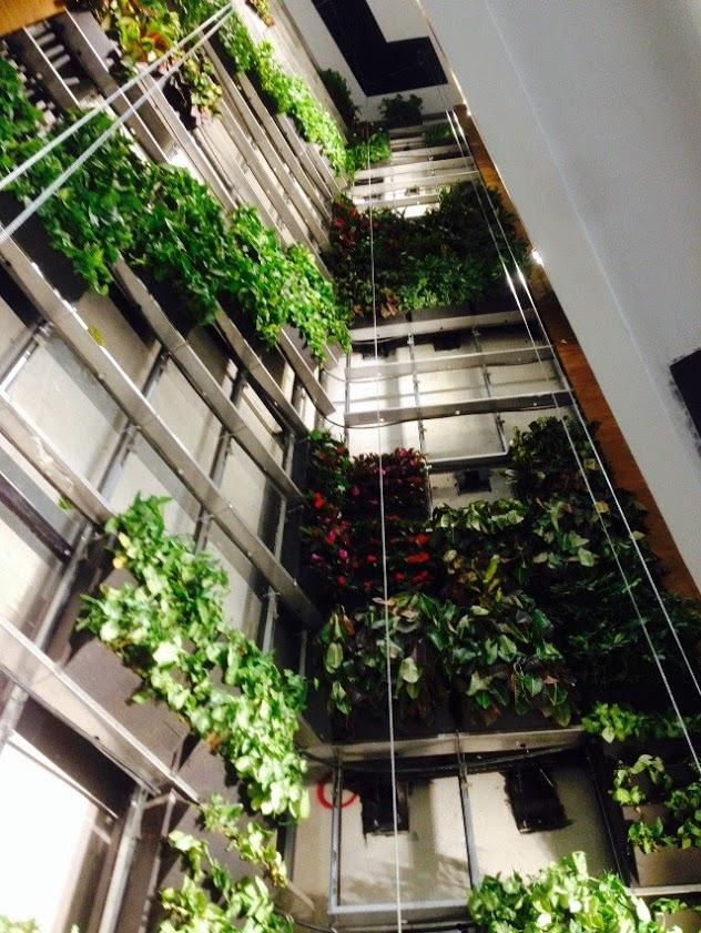 fachada_edificio_con_jardín