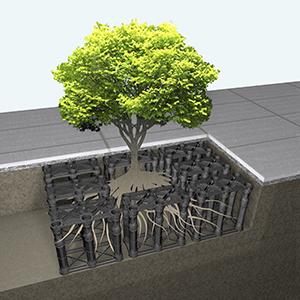 pavimento silva cell