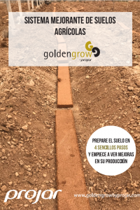 folleto golden grow sin plastico