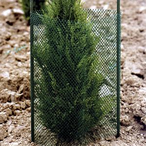 protector de árbol redplanton