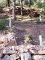 retenedor_de_agua_para_repoblacion_forestal